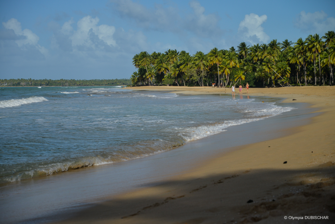 Playa Cosón, République dominicaine