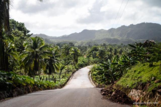 La route du Paradis Las Galeras République dominicaine